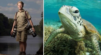 Steve Irwin's Son Is An Award-Winning Photographer, And These Are Some Of His Best Shots