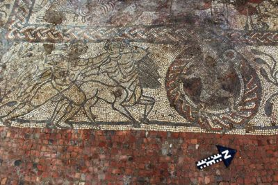 Amateur Archaeologists Uncover Huge Ancient Mosaic