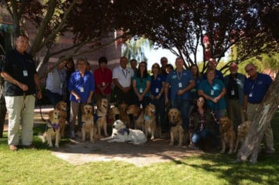 Therapy Dogs Join Las Vegas Victims To Help With Their Recovery