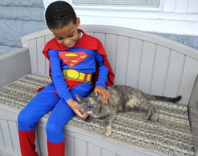 5-Year-Old Loves To Dress As A Superhero And Help Homeless Cats In Philadelphia